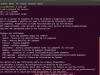 Los poderes de super vaca xD – Ubuntu